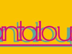 cantaloupe show